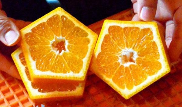 Quả cam được tạo dáng bằng khuôn bọc hình ngũ giác
