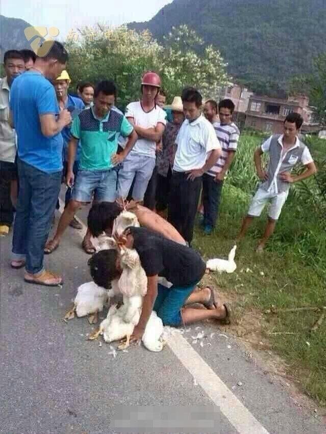 2 cậu bé ăn trộm bị người dân bắt phạt ngậm vịt chết
