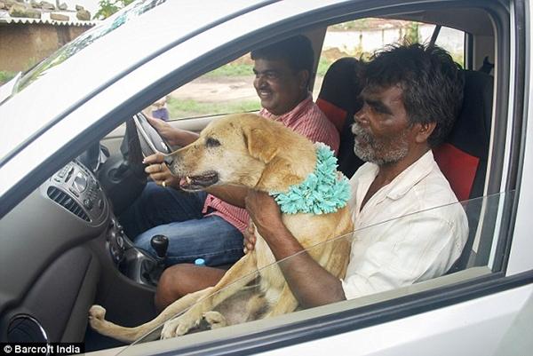 Cha của cô dâu đã ôm Sheru (chú rể của đám cưới) ngồi trên xe đến lễ kết hôn