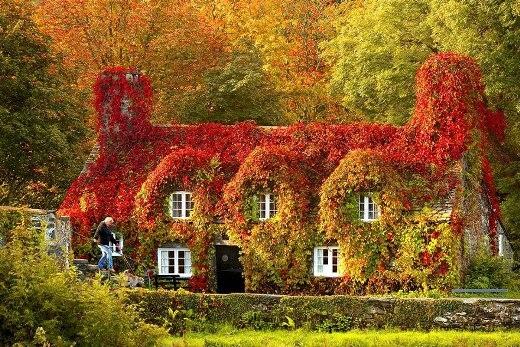 Xứ Wales, Anh Quốc