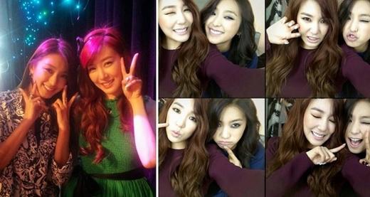 Tiffany và Bora được biết đến là đôi bạn thân kể từ sau khi họ cùng nhau tham gia chương trình Fashion King. Trong những ngày nghỉ, hai cô gái tranh thủ gặp nhau, thậm chí còn tổ chức sinh nhật cho nhau.