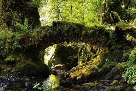 Cầu Rồng của Đà Nẵng lọt top những cây cầu đẹp nhất hành tinh