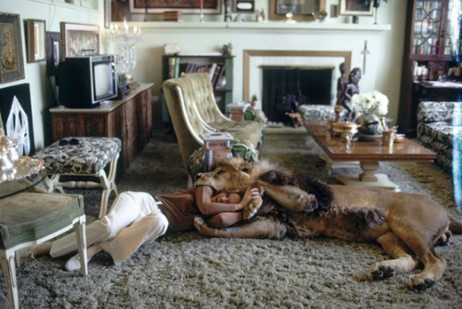 Tippi đùa giỡn vật lộn với con vật nuôi khổng lồ một cách tự nhiên và thoải mái như nghịch với chú mèo.