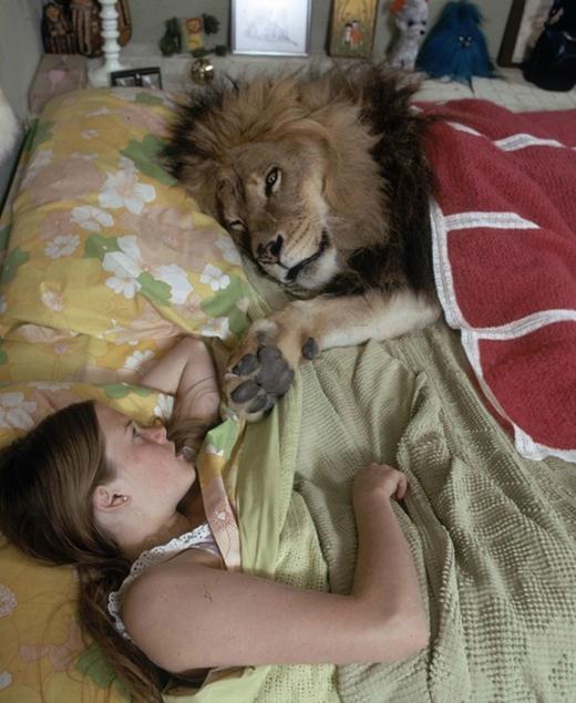 Neil ngủ chung với cô chủ nhỏ như một chú mèo. Nhiếp ảnh gia Michael Rougier chụp lại những khoảnh khắc sinh hoạt thường nhật này