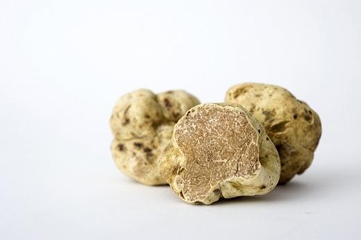 Nấm trắng cũng như người anh em họ nấm đen, là loại nấm cực kỳ quý hiếm. Cứ 450g nấm trắng được bán với giá khoảng 1.360 USD tới 4.200 USD. Trong một cuộc đấu giá, cây nấm trắng nặng gần 1,5kg đã được mua với giá 330.000 USD, quá đắt so với bình thường.