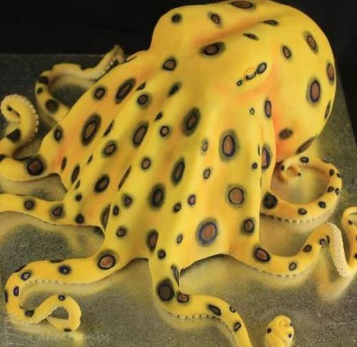 | Bánh kem bạch tuộc này thích hợp cho Halloween hơn...