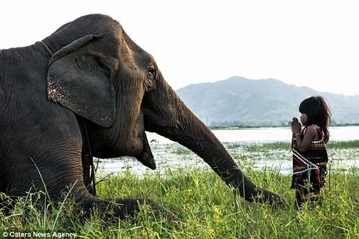 Kim Luan, 6 tuổi, sống tại buôn cổ M'Liêng ở Đắk Lắk, giao lưu với con voi mà gia đình đã thuần dưỡng. Ảnh: Caters News Agency