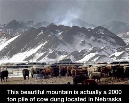 Thấy những đồi núi tuyệt vời ở đằng kia không? Thật ra đó là 2000 tấn phân bò được người dân gom lại ở Nebraska
