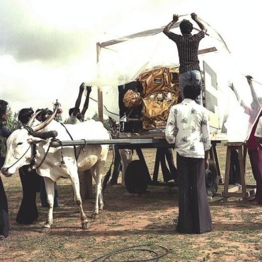 Dùng bò để chở vệ tinh đầu tiên của Ấn Độ năm 1981