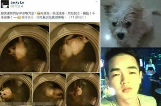 Jacky Lo bị phản đối dữ đội bởi những người yêu động vật. Có hơn 19.000 chữ ký trong bản kiến nghị kêu gọi trừng trị hành động của Jacky Lo. Facebook đã quyết định khai tử trang cá nhân của Jacky Lo do lấy việc ngược đãi động vật làm thú vui.