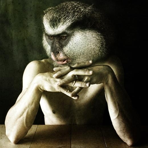 Người khỉ trầm tư