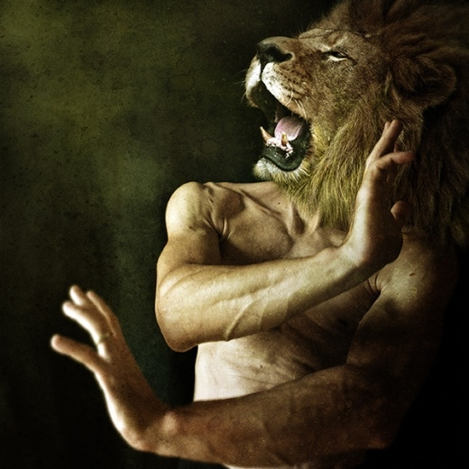 Vua sư tử mạnh mẽ