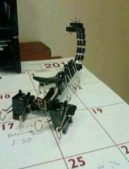 Dụng cụ bấm giấy và kẹp giấy vô tri hoàn toàn có thể biến hành một con bò cạp dũng mãnh