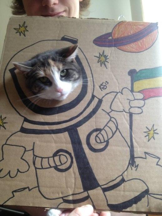 Ước mơ du hành, thám hiểm vũ trụ của mèo ta phần nào đã được mãn nguyện
