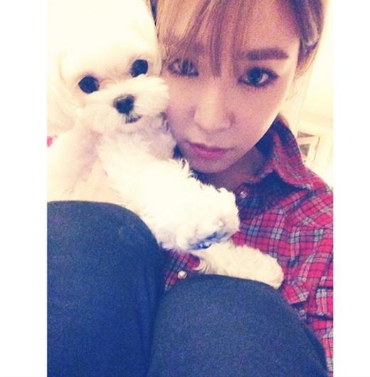 Tiffany bất ngờ khoe hình cùng cún cưng rất dễ thương