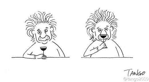 Là Einstein hay là chú sư tử sành điệu?