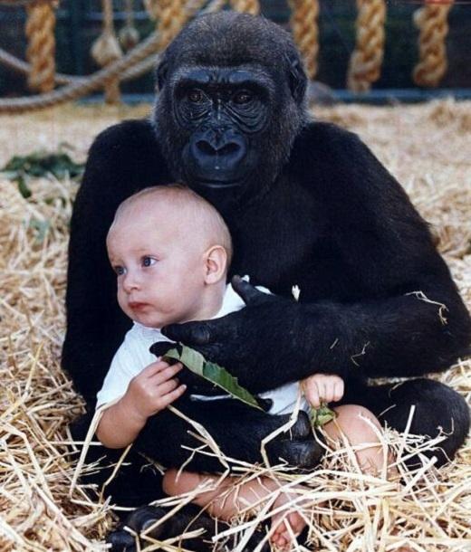 Hình ảnh đặc biệt vào 23 năm trước, khiTansycòn là một em bé 18 tháng tuổi
