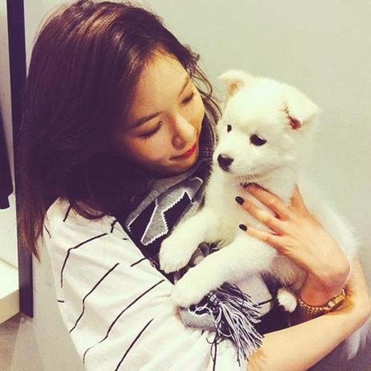 HyunA không thể cưỡng lại sự đáng yêu của chú cún và ôm chúng vào người.