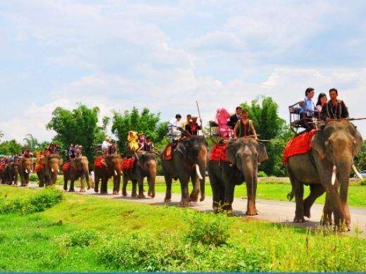 Được biết bố cô dâu là Đặng Vân Long, tên cúng cơm là Đàng Năng Long gia đình sở hữu đàn voi hùng hậu nhất Việt Nam. Rước dâu bằng voi còn để tôn vinh bản sắc văn hóa và nghề nuôi voi truyền thống của đồng bào bản địa Tây Nguyên. Mặt khác, voi cũng là thành viên trong gia đình nên việc cưới hỏi không thể thiếu voi được. Đoàn xe rước dâu độc đáo này diễu phố gần nhà gái, sau đó chú rể tiếp tục đón dâu về nhà tại Buôn Ma Thuột bằng ôtô.