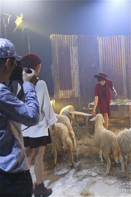 """Thí sinh Yến Nhi khá loay hoay và hoàn toàn bị """"khớp"""" trước những chứ cừu khiến cho cô gái này không thể tập trung và tạo ra những dáng ưng ý."""