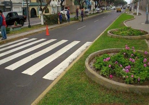 Khuyến khích người băng qua đường giẫm lên cỏ và hoa?