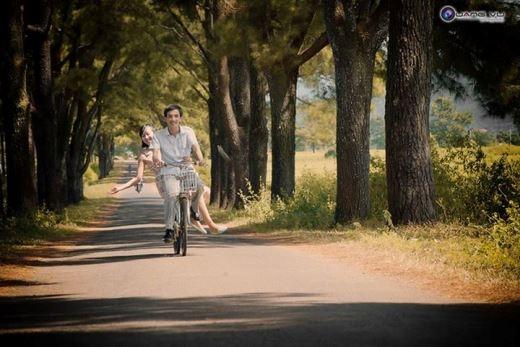 Bên cạnh Biển Hồ là con đường với hai hàng thông xanh dẫn đến vườn chè xanh ngát tạo nên nét đẹp nên thơ
