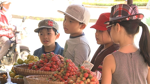 4 bé Bờm, Tê Giác, Suti và Bo nhanh chóng bán hết sạch dâu - Tin sao Viet - Tin tuc sao Viet - Scandal sao Viet - Tin tuc cua Sao - Tin cua Sao