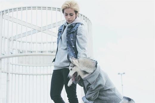 Mới đây Gil Lê vừa hé lộ những bức hình chụp cùng chú chó Mocha trong bộ ảnh mới khiến các fan 'đứng ngồi không yên' vì sự đẹp trai của Gil và dễ thương của Mocha.