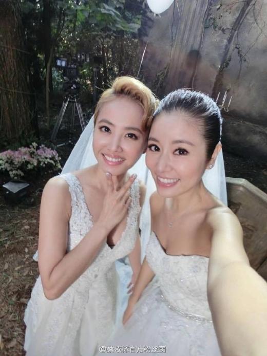 Thái Y Lâm - Lâm Tâm Như