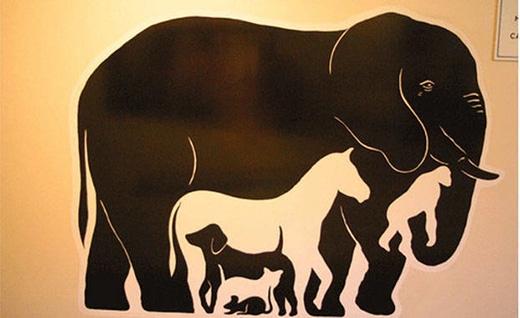 Có bao nhiêu con vật trong bức ảnh?