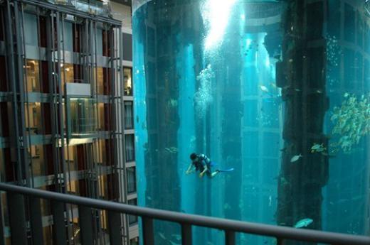 Bể lặn trong một khách sạn ở Dubai