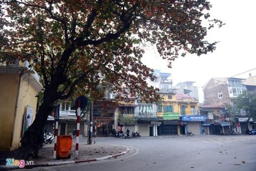 Khung cảnh vắng vẻ càng tô đậm thêm nét đẹp thân quen của Hà Nội với những tán bàng lá đỏ mùa đông.