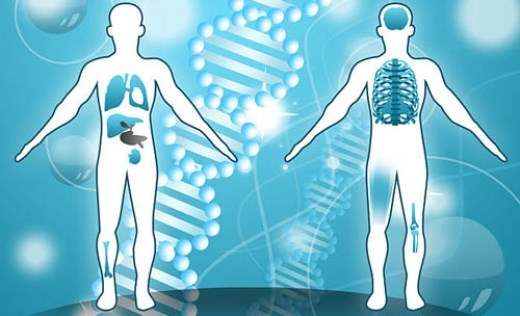Cơ thể con người chứa đựng nhiều điều bí ẩn. Ảnh minh họa: wikihow