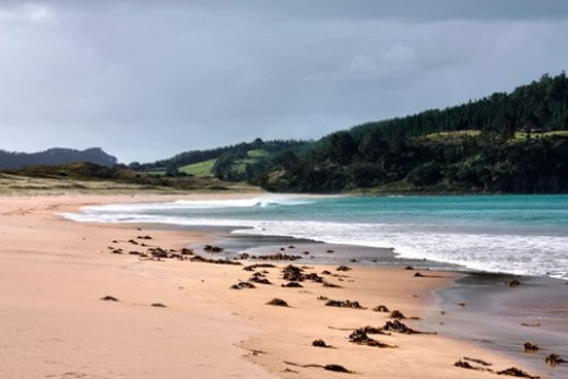 Bãi biển nước nóng, New Zealand: Mỗi khi thủy triều rút, nơi đây lại trở thành một spa thiên nhiên cho du khách thả sức ngâm mình. Người dân địa phương hay mang theo xẻng, đào một hố trên cát để nước nóng tràn vào. Cho đến khi thủy triều lên, người ta mới đành tạm ngừng hưởng thụ, đợi đến lần thủy triều xuống tiếp theo.