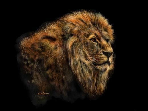 Nhiều nghệ sĩ iPad tái tạo lại những bức ảnh hoặc hình ảnh họ đã chứng kiến, những người khác sáng tạo từ trí tưởng tượng, trong đó có eichan68. Người dùng Paper by FiftyThree có tên eichan68 đã nắm bắt hoàn hảo chi tiết bộ lông của chú sư tử.