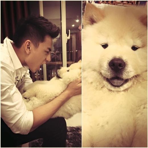 Isaac đăng hình chơi đùa cùng chú cún khá đáng yêu. Fan của anh chàng 'đứng ngồi không yên' vì mặt chú cún rất dễ thương mập mập, xinh xinh như cục bông vậy.