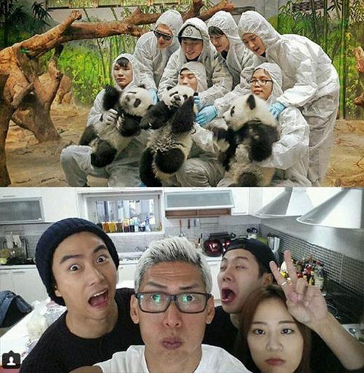 Park Jun Hyung thích thú khoe hình hai chương trình thực tế mà anh tham gia, anh chia sẻ: 'Vào ngày chủ nhật, tôi sẽ tụ tập với các chú động vật trong chương trình Animals của đài SBS. Nhưng tối thứ ba, tôi lại gặp gỡ và vui chơi cùng các em trong Roommate'.