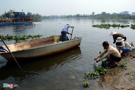 Một hình ảnh rất xấu tồn tại lâu nay ở Sài Gòn: Một bên thả cá - một bên bắt bằng sạch.