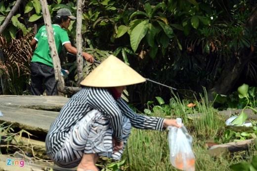 Trong khi một phụ nữ đang nâng niu thả những chú cá chép cho ông Táo thì cách đó không xa, một thanh niên dùng vợt đưa một con cá chép vừa kích điện lên ghe.