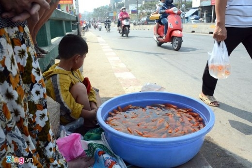 Một gia đình bán cá chép vừa vớt được trong sáng 23 tháng Chạp dưới cầu An Lộc, quận 12 trong khi một người đàn ông xách túi cá vừa mua lên cầu để phóng sinh. 'Việc những người bắt cá vừa phóng sinh dù để bán, nuôi hay ăn khiến những người đi phóng sinh tức giận', ông Đức chia sẻ.