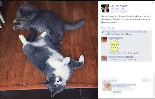 Nhân dịp năm mới, Chi Pu cũng không quên gửi lời chúc Tết đến hai chú mèo xinh xắn, đáng yêu của mình. Cô nàng còn nũng nịu và than thở 'nhẹ' trước độ 'phì nhiêu' của 2 cục cưng khiến nhiều khán giả cảm thấy thích thú. - Tin sao Viet - Tin tuc sao Viet - Scandal sao Viet - Tin tuc cua Sao - Tin cua Sao
