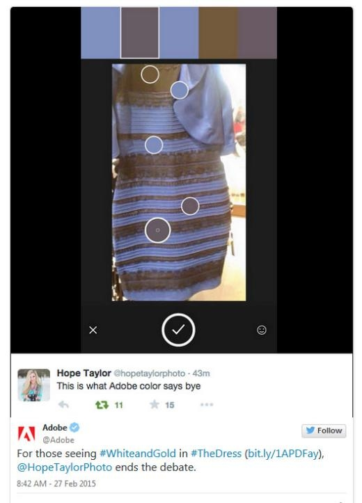 Hope Taylor đưa ra kết luận cuối cùng là xanh đen.