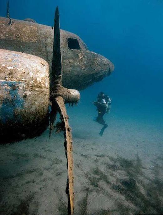 Một máy bay bị đắm dưới đại dương hàng thế kỷ.