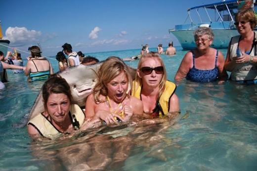 Có nhiều trường hợp cá đuối không phải là người bạn thân thiện với con người.