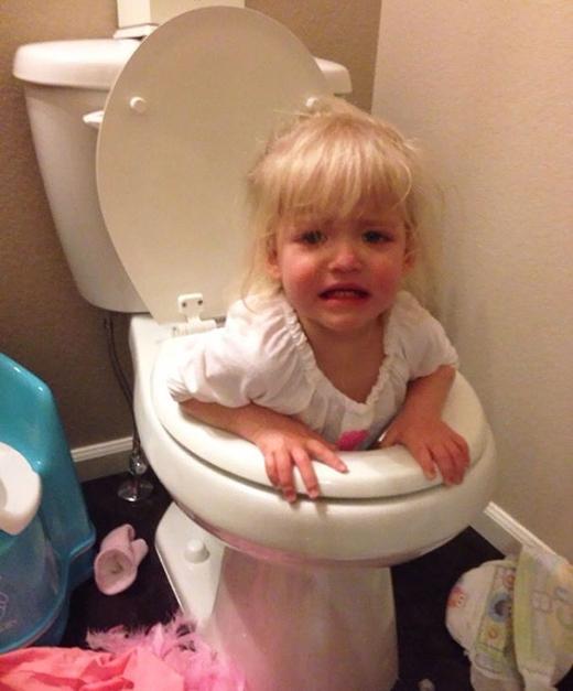 Tụi nó không thể phân biệt đâu là bồn cầu toilet, đâu là đồ chơi