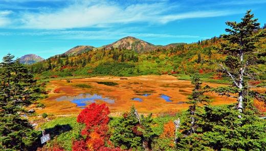 Đến Niigata vào mùa thu thì hồ Koya là địa điểm mà bạn không thể bỏ qua.