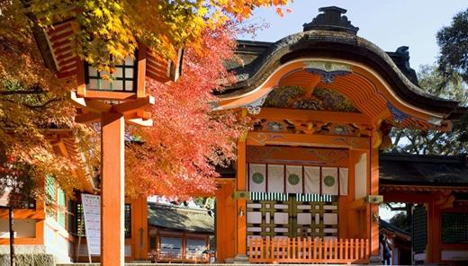 Được xây dựng vào thế kỷ thứ 8, đền Usa ở Oita đã đứng vững qua rất nhiều thiên tai và các cuộc chiến tranh trong lịch sử Nhật Bản.