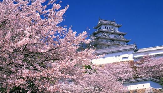 Là bối cảnh chính trong nhiều bộ phim của Nhật và Hollywood, lâu đài Himeji ở Hyogo luôn có sức hút mãnh liệt đối với các du khách.