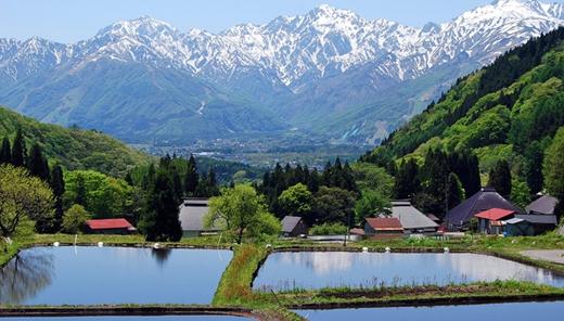 Đến làng Hakuba ở Nagano, bạn có thể tận hưởng không khí thanh bình vào mùa hè hay sự náo nhiệt của khu trượt tuyết ở đây vào mùa đông.