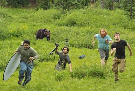 Chú gấu rượt đuổi các nhà làm phim